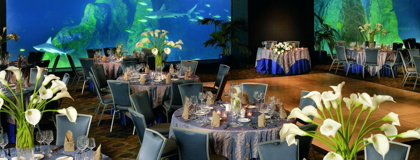 Adventure Aquarium Hall Rentals in Camden, NJ